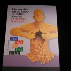 The Art of the Brick 1